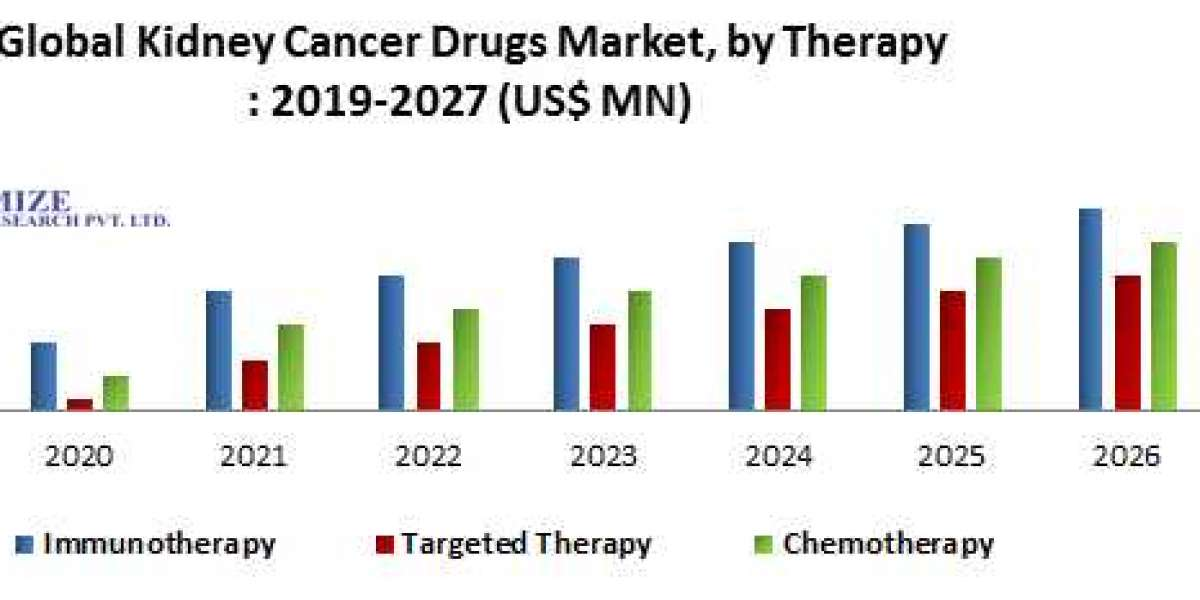 Global Kidney Cancer Drugs Market- Industry Analysis and forecast 2019 – 2027