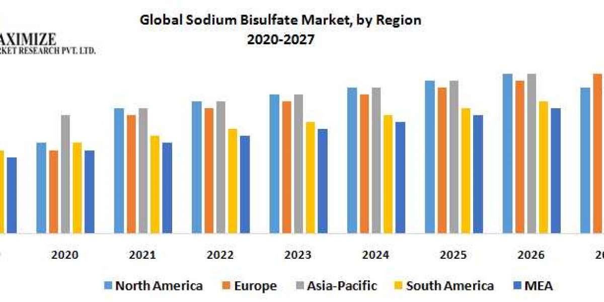 Global Sodium Bisulfate Market