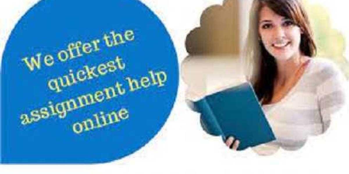 How to choose the best assignment help service provider in Qatar