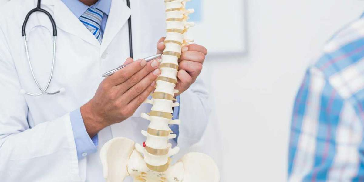Best Chiropractor Tauranga